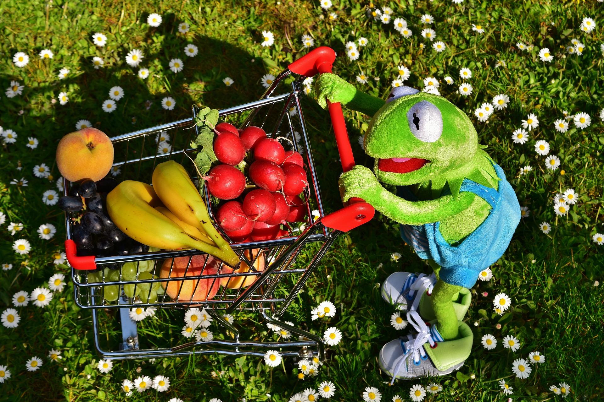 Kermit mit Einkaufswagen